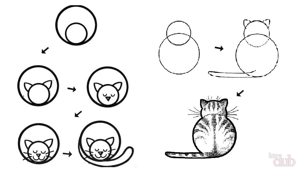 Cara menggambar kucing tidur
