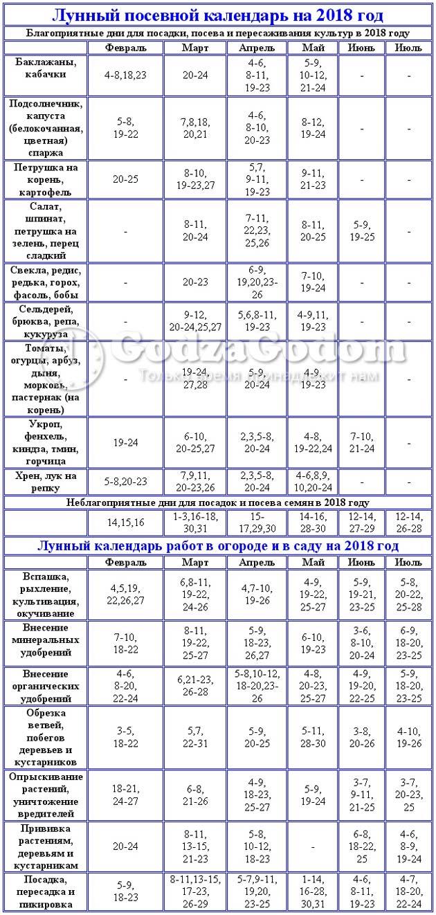 Calendario Di Semina.Calendario Del Giardino Calendario Di Semina Per Febbraio