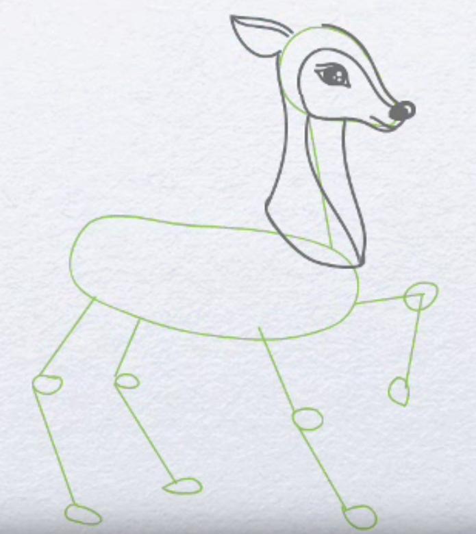 Cómo dibujar un lápiz de venado para niños. Cómo dibujar un ciervo a ...