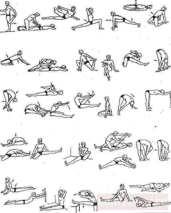 Упражнения для растяжки мужчин в домашних условиях 884