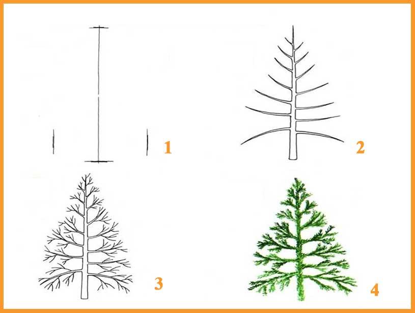 Come Disegnare Un Bellissimo Albero Disegna Un Albero